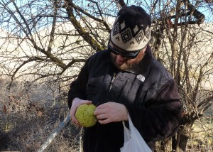Son Brian finds the first Osage Orange