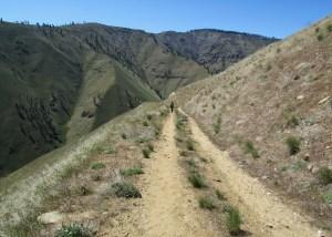 Swakane Canyon . . . along the trail