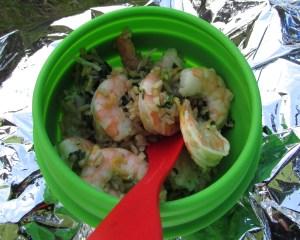 Backpacker dinner - shrimp and pasta