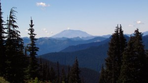 Mount Saint Helens . . . from the trail