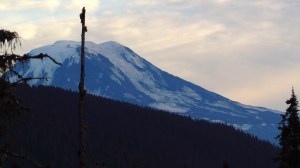 Mount Adams . . . from the trail