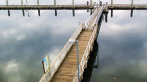 Dock at Fiddlehead Marina