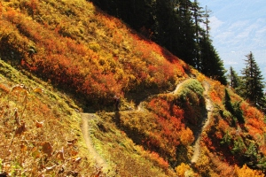 Colorful switchbacks