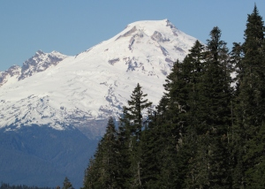 Mount Baker from the trail